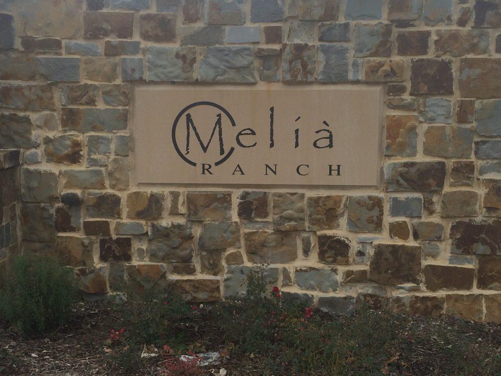 Melia Ranch: Arlington TX Neighborhood Guide